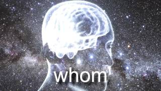 whomst.mp4