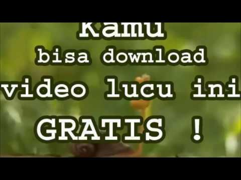 Xxx Mp4 Kamu Bisa Download Video Lucu 3gp Untuk HP Ini GRATISSS 3gp Sex