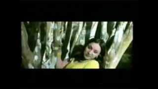 nepali song bhare auchhu sapanima 21.FLV