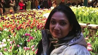 Philadelphia Flower Show    পৃথিবীর সবচেয়ে বড় পুষ্প প্রদর্শনী। Top 5