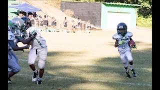 Hassan Sykes 2016 10U Highlights