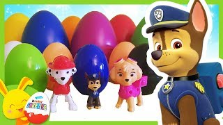 Competition des couleurs Pat Patrouille -  Chase, Stella, Marcus - Touni Toys - Titounis