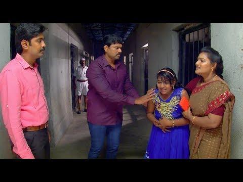 Priyamanaval Episode 841, 17/10/17