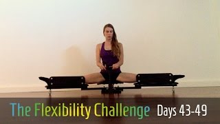 100 Day Challenge 2 | Contortion Flexibility |  Days 43-49
