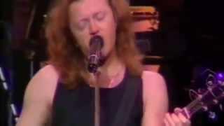 06- Notte rosa -  Royal Albert Hall Londra- umberto tozzi.1988.