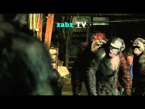 Jamaican planet of the apes Batty Face ZABZ TV