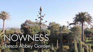 """Tresco Abbey Garden"" by Howard Sooley"