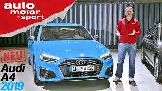 Audi A4 (2019): Alles, was du über das Facelift wissen musst - Review/Sitzprobe | auto motor & sport