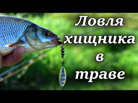 отчет о рыбалке пруд мята
