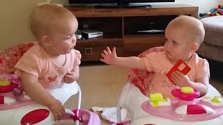 FUNNY TWINS BABY ARGUING OVER EVRYTHING 🐣 Cute Babies Video