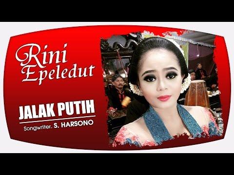 Download Lagu Rini Epeledut - Jalak Putih [OFFICIAL] MP3