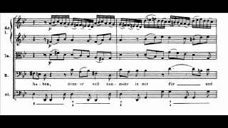 Bach - Passione secondo Matteo - Aria B: Mache dich, mein Herze, rein