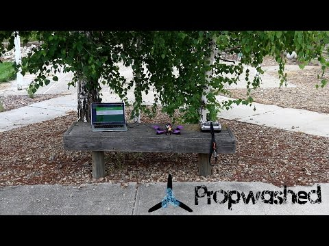 Initial PIDs the Easy Way [Propwashed Testbench]