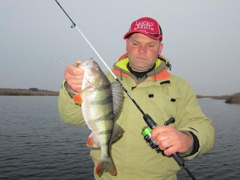 рибалка сезон щучка днепр