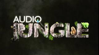 Music Packs - Inspiring Uplifting Corporate Pack | AudioJungle