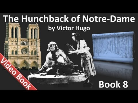 Book 08 - The Hunchback of Notre Dame Audiobook by Victor Hugo (Chs 1-6)
