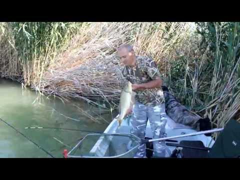 сазан ловля с лодки видео на