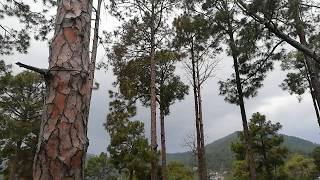 Beautiful View Of Murree Pakistan | Murree Videos 2019 | Guide Lines