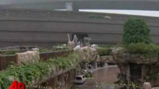 Raw Video: Full-size Noah's Ark Replica