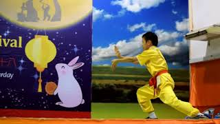 Nanquan Performance by 12 years old boy 12岁男生表演南拳