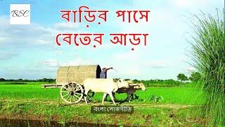 বাড়ির পাসে বেতের আড়া-জনপ্রিয় লোকগীতি (Barir pashe beter ara - Popular Folk Song)