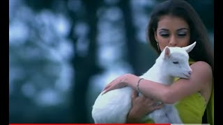 Uss Ladki Pe Dil Aaya   Naam Gum Jaayega 2005 Special Compilation   YouTube