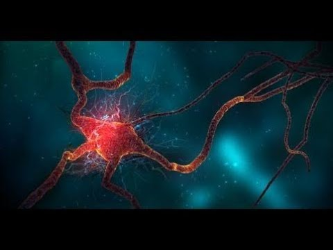 Discovery Channel 2017 Human Brain And Quantum Physics Science Full Documentary HD 2017