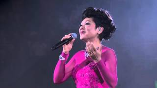 Frances Yip 45th Anniversary Live In Hong Kong Karaoke 2015 BluRay 720p 2Audio DTS Flac x264 beAst