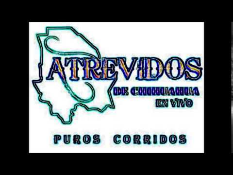 EL PAJARO AZUL LOS ATREVIDOS DE CHIHUAHUA