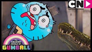 Gumball | Gumball Fights a Shapeshifting Crocodile | Cartoon Network