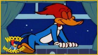 Woody Woodpecker Show | Sleepwalking Woody | Full Episode | Cartoons For Children