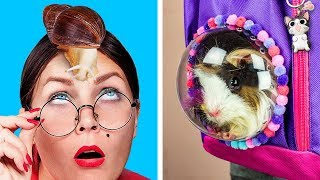How To Sneak Pets Into Class / 8 Funny Pet Pranks And Hacks
