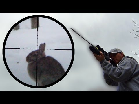 Arrow Gun Rabbit Hunt with FX Verminator and G5 Small Game Head SGH