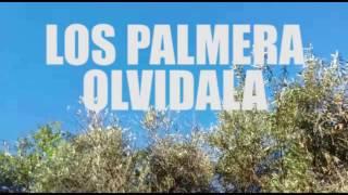 Los Palmeras - Olvídala (Video Cover)