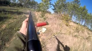 jornada 2 caça ao coelho 2015