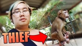 GETTING ROBBED BY MONKEYS IN ASIA (THAILAND)