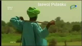 Laawol Pulaaku