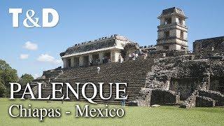 Palenque Tourist Guide - Mexico Video Guide - Travel & Discover