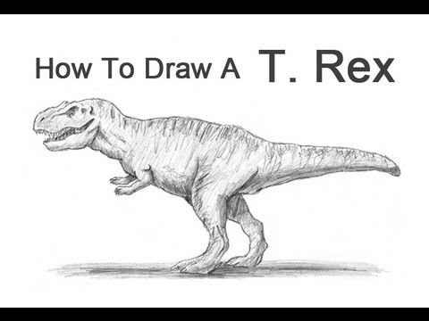 How to Draw a Tyrannosaurus Rex T. rex