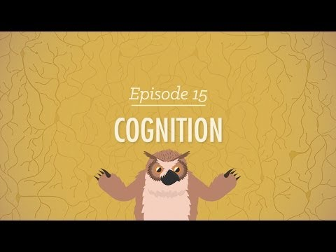 Xxx Mp4 Cognition How Your Mind Can Amaze And Betray You Crash Course Psychology 15 3gp Sex