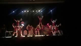 Pompoms Polytech Lyon - Polytech Talent 5 - 2017