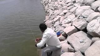 Fishing in indian styel Saleem Bhai  9849074663