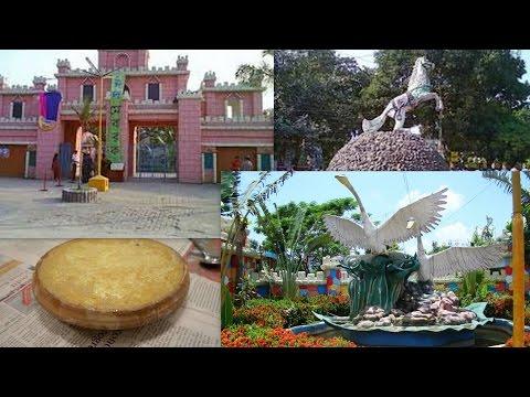 BOGRA CITY |WANDERLAND PARK |YOGURT OF BOGRA