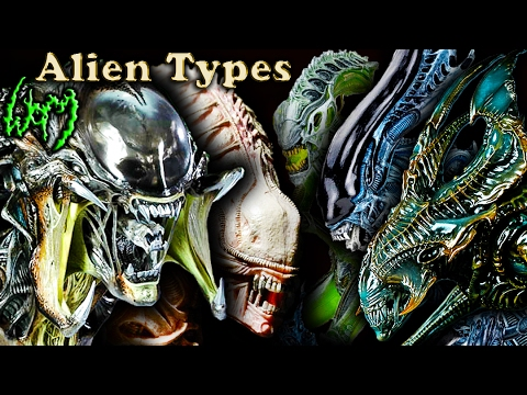 Every Type of XENOMORPH - ALIEN