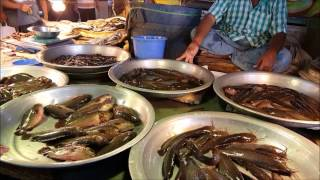 Incredible Fish Market | Huge Fish Market With Lot of Desi Local Fish Available
