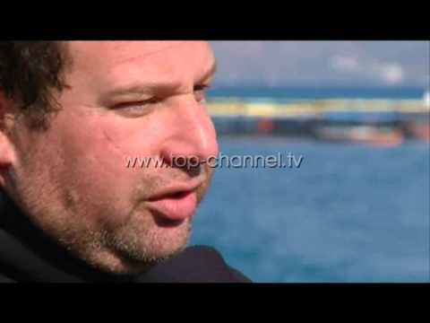 Wake Up 24 03 2015 Nga Izraeli në Vlorë Top Channel Albania