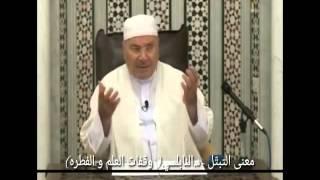 معنى التبتُّل * د.محمد راتب النابلسي