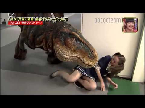 broma Japonesa; Dinosaurio T REX.