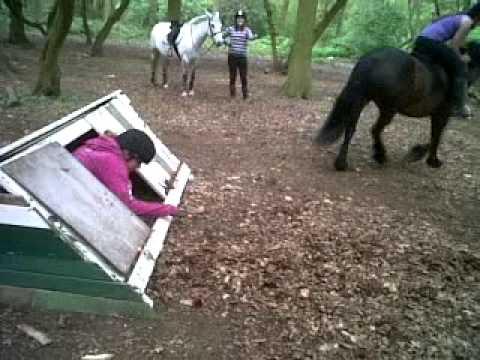 FUNNY: Jumping Nina Horseback FAILED! :D xxx