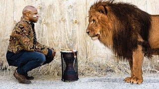 Heart of A Lion - Alex Boye'